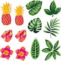 Tropical Plants Window Cling 60x60cm -