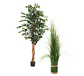 Artificial Display Plants