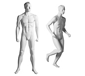 Male Sculpted Sports Mannequins