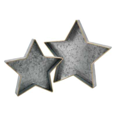 Metal Star Tray