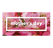 Mothers Day Cherry Blossom Poster