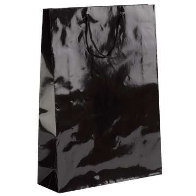 Black Laminated Gloss Paper Bags
