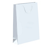White Laminated Matt Paper Bags