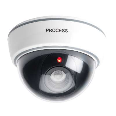 Dummy Dome Security Cameras